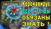 коронавирус что надо знать